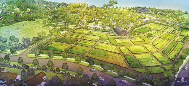 High_Res_-_Arden_Community_Garden-Farm_opt.jpg