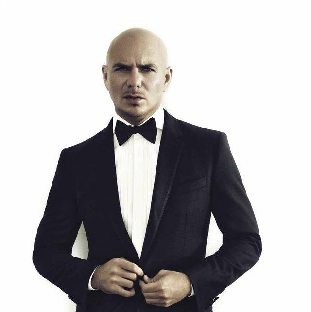 Pitbull_opt.jpg