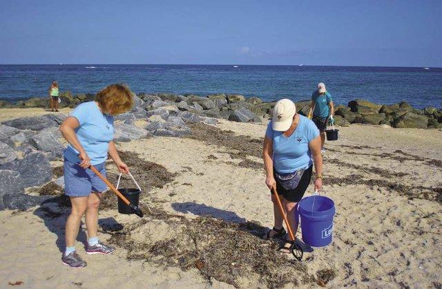 Sea_Angels_Volunteers_opt.jpg