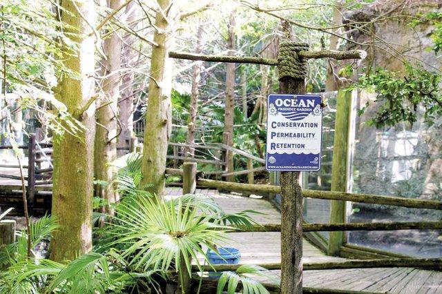 Surfrider_Ocean_Friendly_Garden_opt.jpg