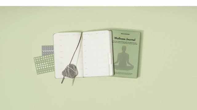 Moleskine_Passion_Journal_-_Wellness_(1)_opt.jpg