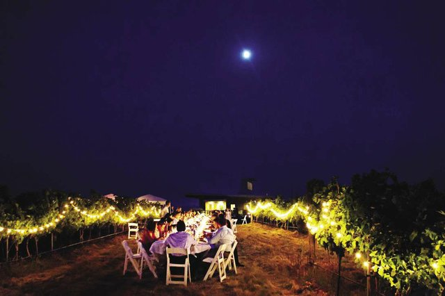 WINE-Amavi_Cellars_Vineyard_Dinner_opt.jpg