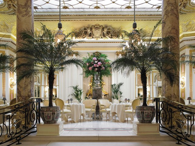 Palm Court 2_web.jpg