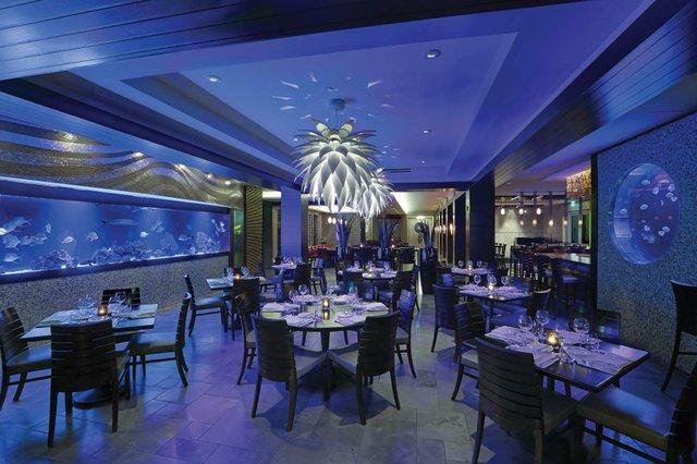 Entire Restaurant Sh462161 copy 4_web.jpg