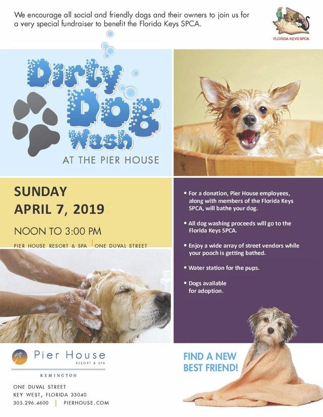 Dog Wash Ad 2019.jpg