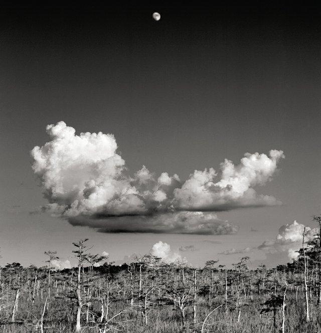 Moonrise-4C.jpg
