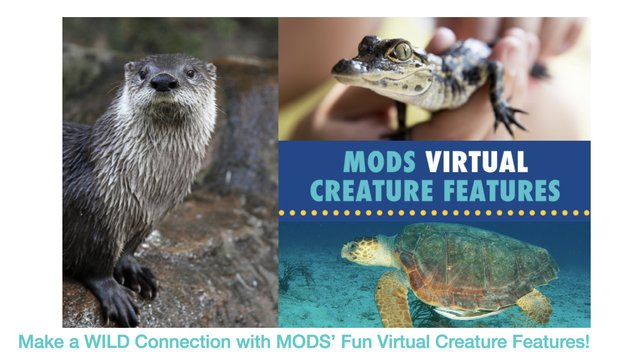 MODS Creature Features Graphic.png
