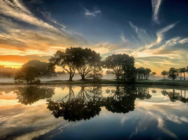 Ibis Sunrise_web.jpg