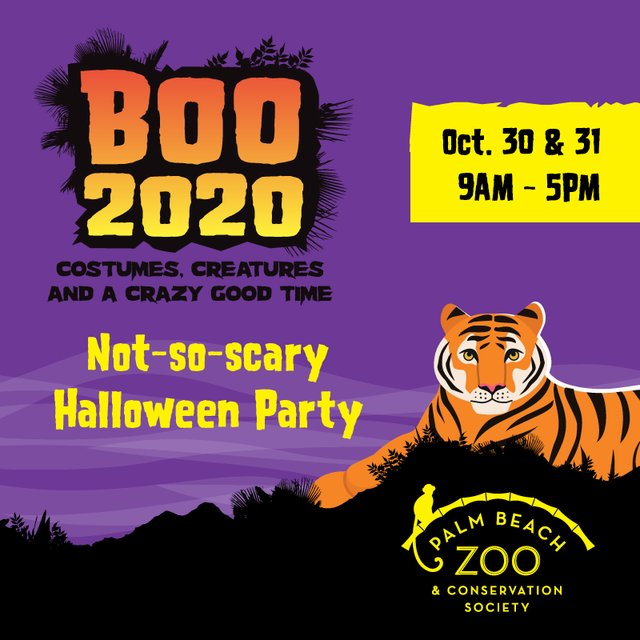 BOO2020-Purple Sqaure Tiger.png