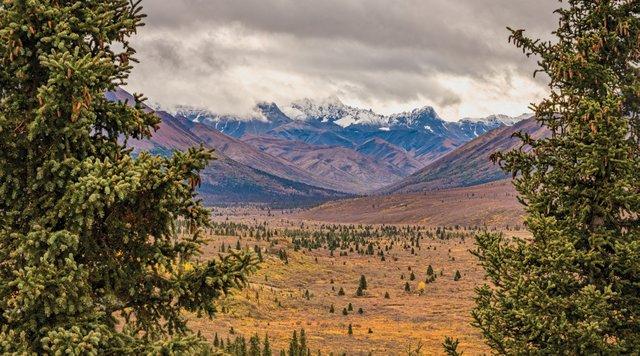 BocaRatonObserver_Alaska.jpg