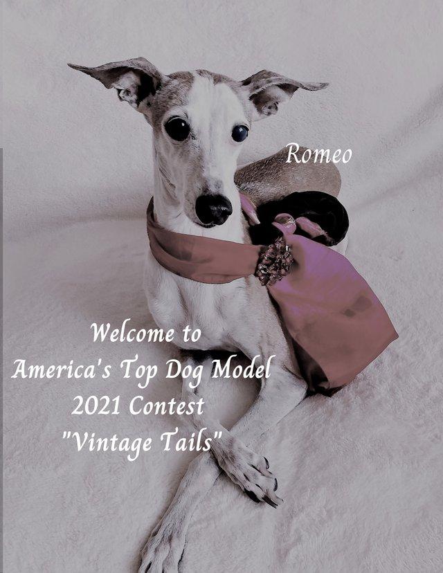 Romeo Vintage Contest Announcement.png